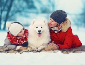 Kaip  žiemą išlaikyti kaulus sveikus, o nuotaiką puikią?