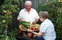 Pavasariniai sodo darbai ir jų grėsmė sveikatai.  + 7 patarimai, kaip pasigaminti komposto.