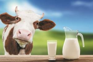 Ar tikrai pienas nekenkia?