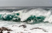 Sergant sloga verta į pagalbą pasitelkti hipertoninį jūros vandenį