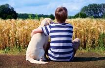 5 mitai apie alergiją naminiams gyvūnams