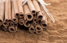 Gydomosios kvapniojo cinamono savybės